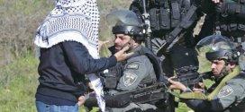 فلسطين .. النضال في القدس والضفة الغربية.. مشكلات راهنة