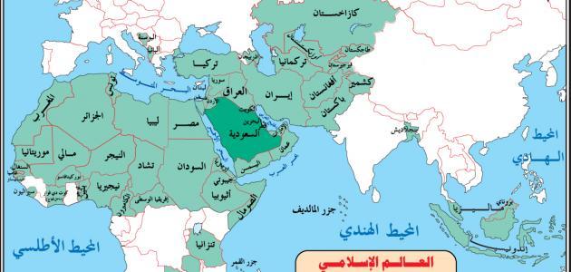 كيف خسر العالم الإسلامي علاقته بأفريفيا؟!