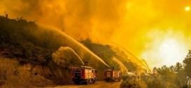 الأويغور يشاركون الأتراك مواجهة الحرائق والفيضانات