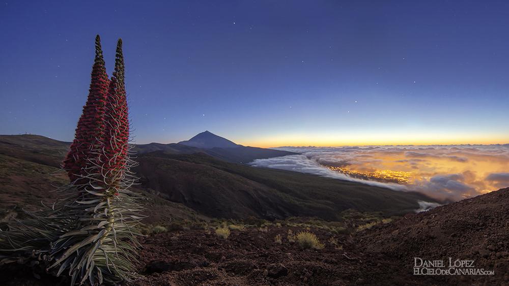 El Cielo de Canarias  Portfolio Daniel Lpez EN