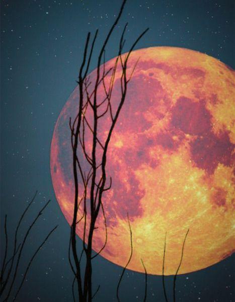 Plenilunio: el Sol en Tauro y la Luna Llena en Escorpio