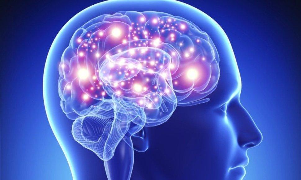¿Quieres memorizar fácilmente? Aprende la dieta para el cerebro