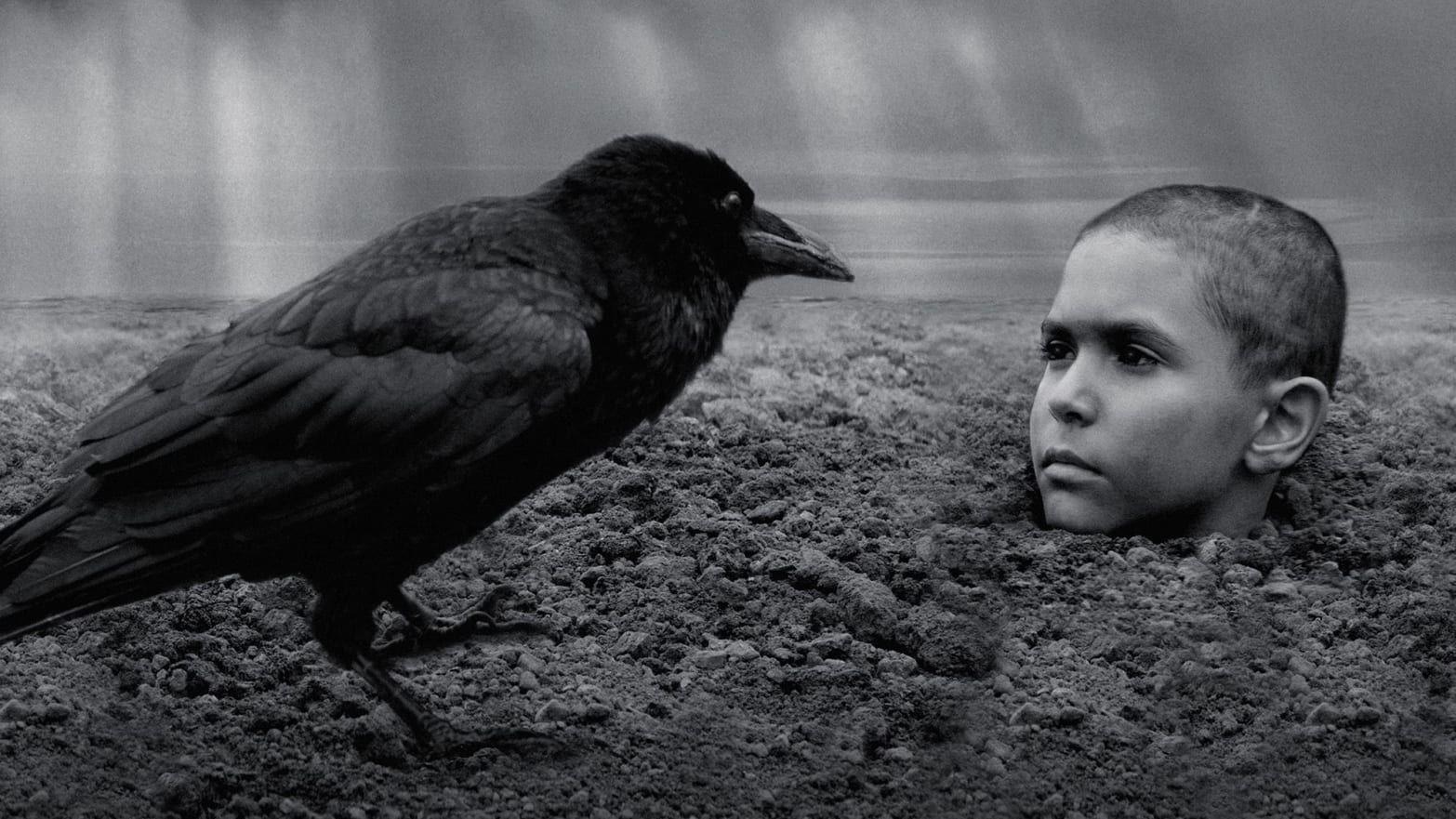 «El Pájaro Pintado», la cinta que hace a la gente abandonar la sala de cine y acá la razón