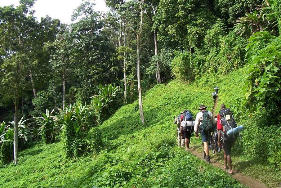 Colombia comenzó apertura progresiva de parques nacionales naturales para el turismo