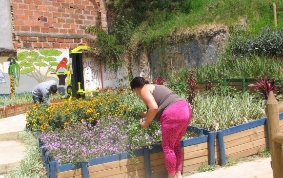 Expertos del Jardín Botánico sembraron las plantas y capacitaron a la comunidad.