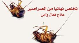 مكافحة الصراصير فى جدة