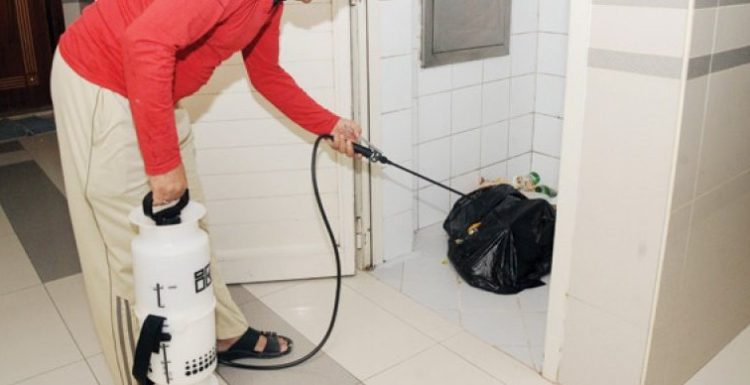 أختيار شركة رش مبيدات و مكافحة الصراصير المنزلية بجدة