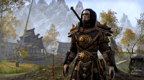 20 Elder Scrolls Online Imperial Armor Medium Pictures And Ideas On