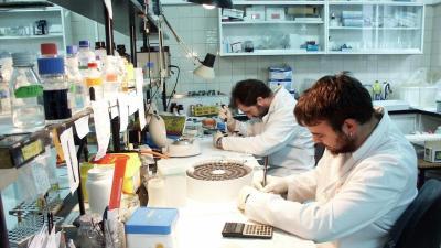 Sodercan convoca ayudas para la mejora científica en institutos de investigación cántabros