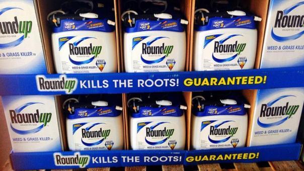 El herbicida RoundUp es uno de los más vendidos del mundo / Mike Mozart
