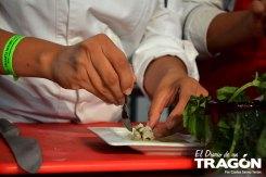 diario-tragon-vallarta-nayarit-gastronomica-2015-31