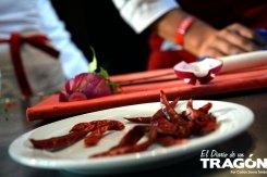 diario-tragon-vallarta-nayarit-gastronomica-2015-32