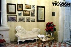 diario-tragon-rose-ville-07