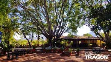 Diario-Tragon-Huachimontones-la-ruta-del-tequila-2018-42