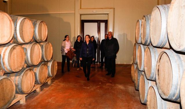 2015032714 Soriano en Bodegas  Lozano de Villarrobledo 3