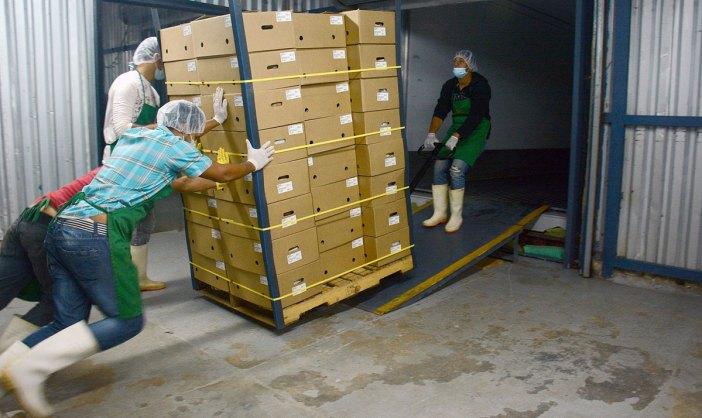 exportaciones dominicanas pib dominicano