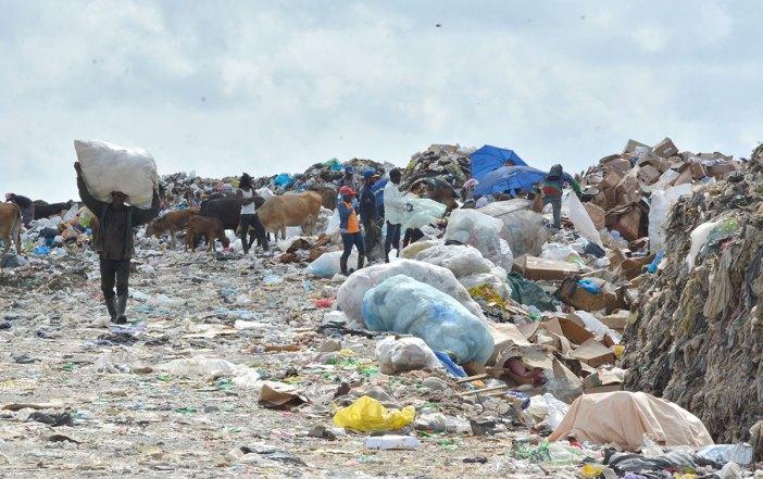 recicladores duquesa