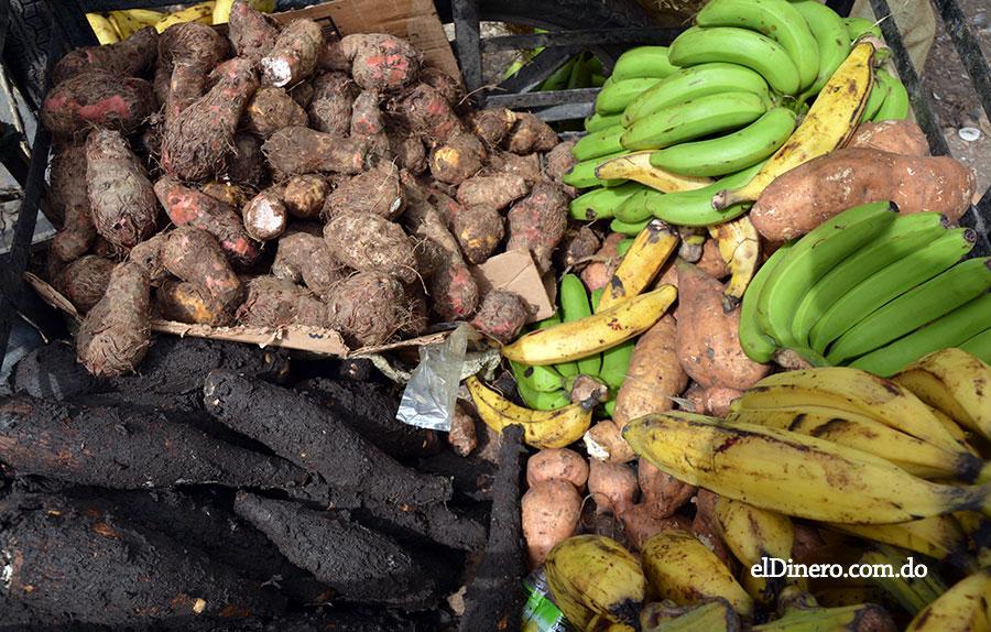 Guineo, yuca, vegetales y otros productos agrícolas suben de precio por sequía