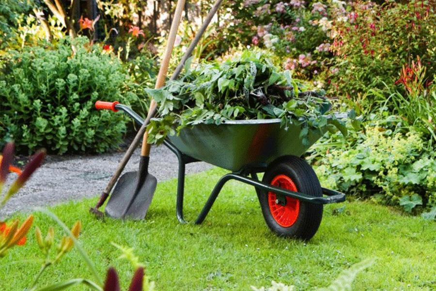 servizio di giardinaggio palermo