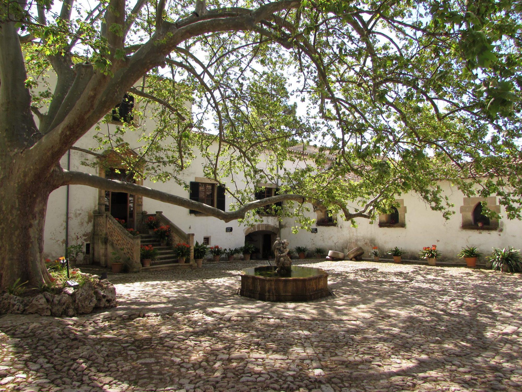 patio jardines de alfabia