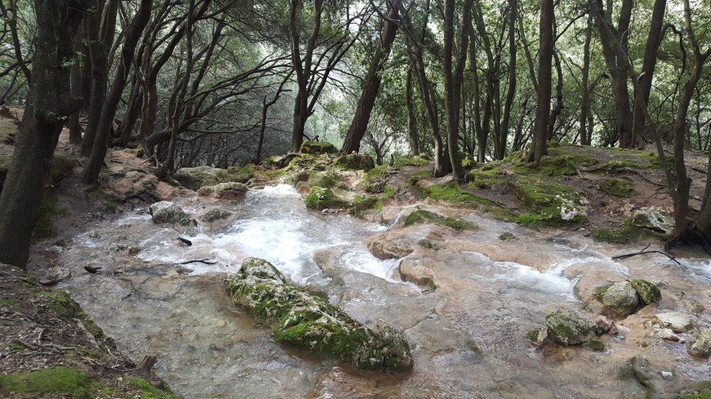 Torrente de Coanegra antes de la cascada principal