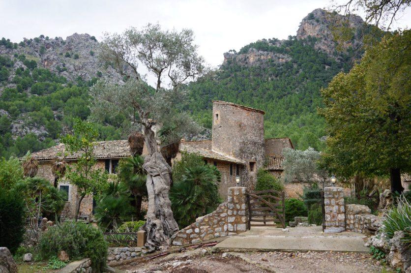 Excursión a Balitx d'Avall