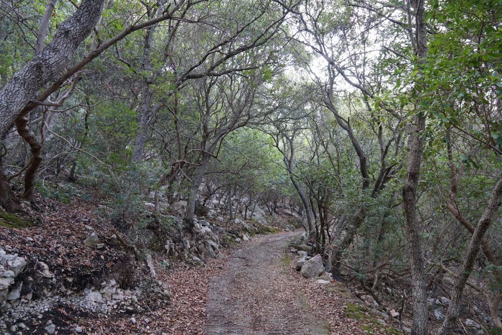Ascenso a la ermita de Maristella, Esporles