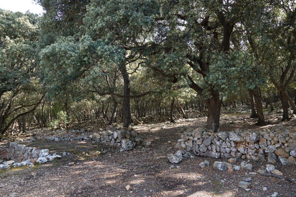 Inicio del camino a la Ermita Vella y la Fita des Ram