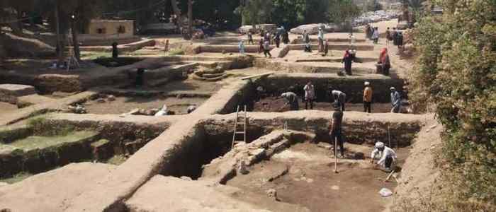 كشف أثري جديد في مصر مقابر لقطط محنطة