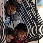 مسؤول إيرلندي: خفض المساعدات الأمريكية للفلسطينيين تتسبب في كارثة على الأرض
