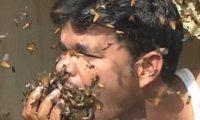 هندي يأكل النحل حياً في فمه منذ 16 عاماً