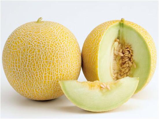 melon-fruit