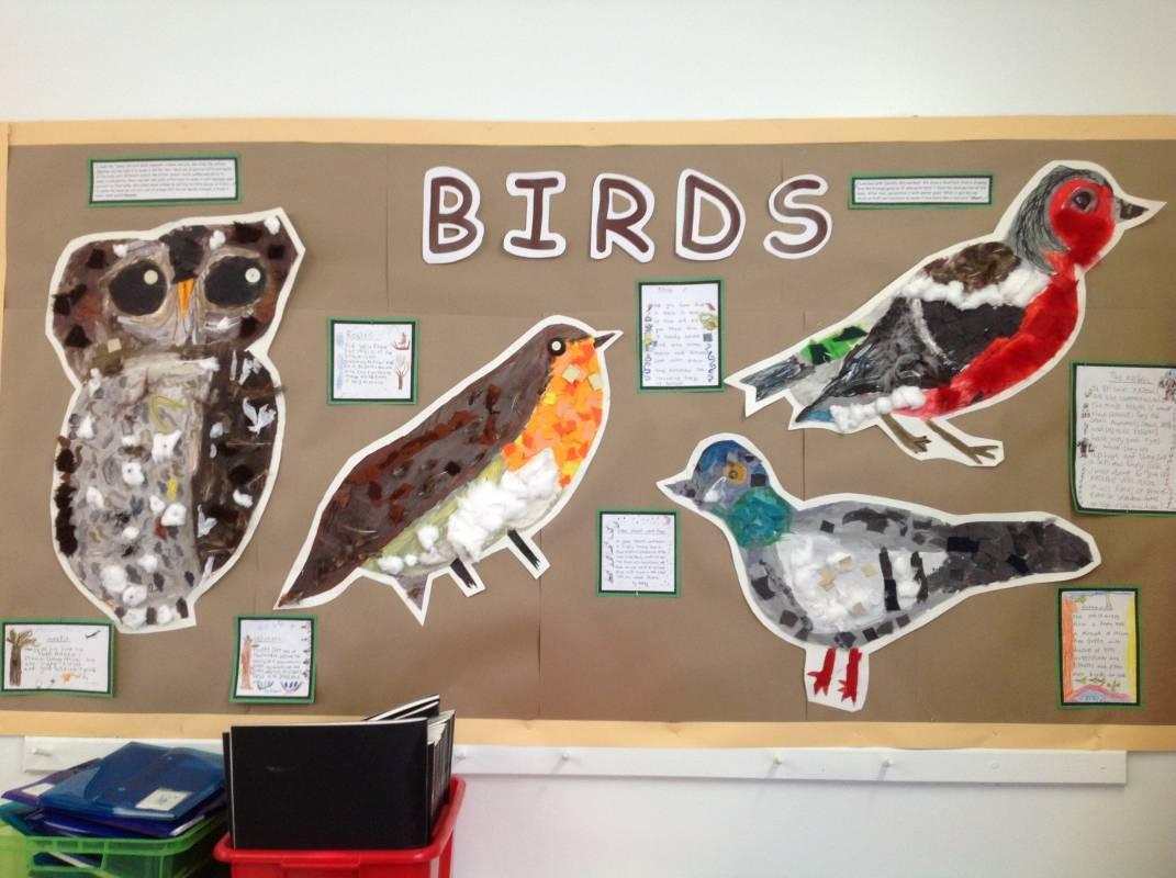 Year Ones Birds Displays  Eleanor Palmer Primary School