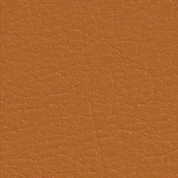 Eleather Swatch - Orange