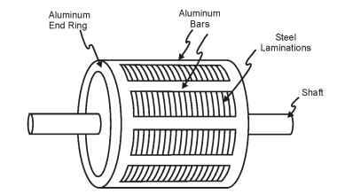 Squirrel Cage Induction Motor: Working Principle