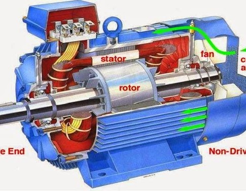 Things You Need to Know About Three Phase Induction Motors