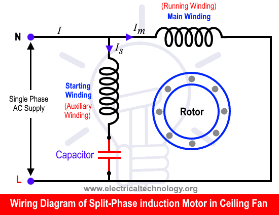 What Is The Role Of Capacitor In A Ceiling Fan Electrical