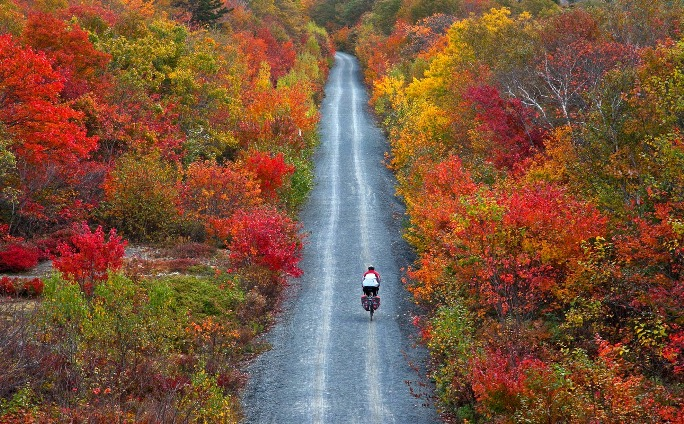 New England in Autumn...