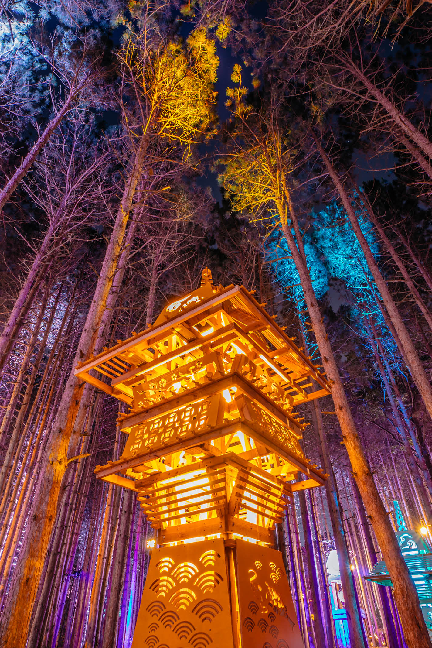 electric forest wallpapers electric