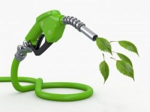 petrol renouvelable