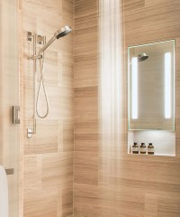 In-Shower Fog Free Mirrors