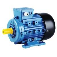 Ms Series 4 Pole Electric 3 Phase Induction Motor Abb Weg ...