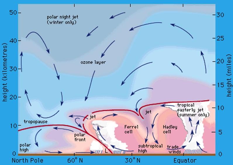 Afbeeldingsresultaat voor Polar Night Jet
