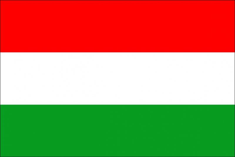 ElectroLARP Hungary