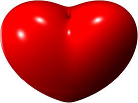 heart surface