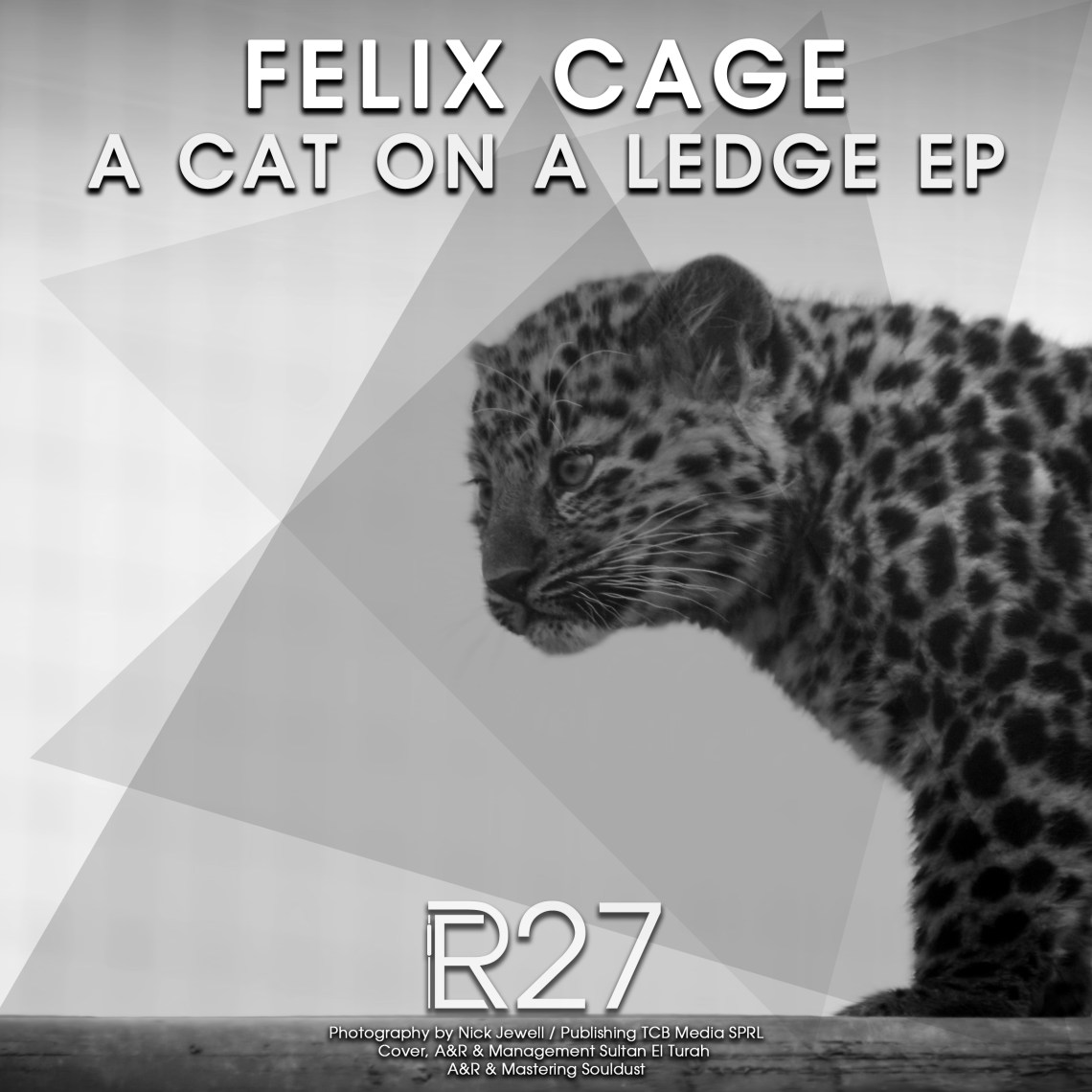 ER027 - Felix Cage - A Cat On A Ledge EP (incl. Superdrums Remix) - Electronical Reeds