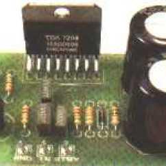 Audio Amplifier Circuit Diagram With Layout Skunk Anatomy Tda Circuits