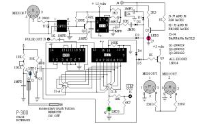 P300 Pulse Interface