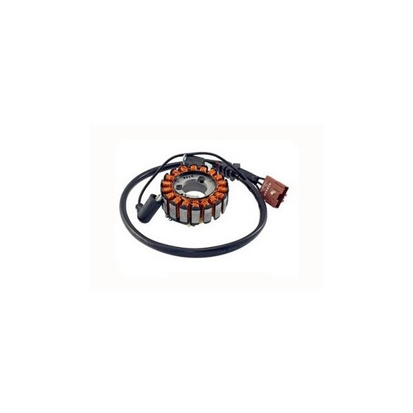 Alternateur Stator Allumage Derbi GP1 250 Rambla 250