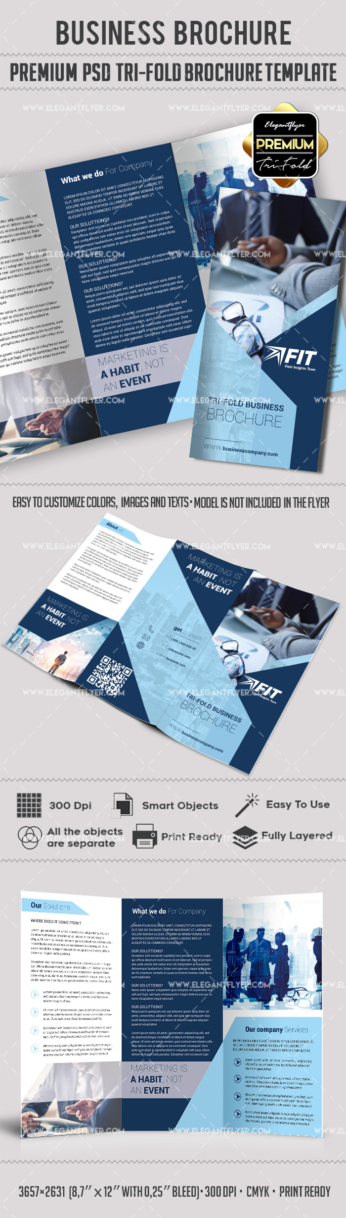 Tri Fold Flyer Template